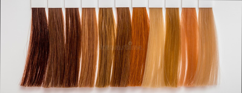 Muestras de pelo de diversos colores para teñir en la peluquería s imagen de archivo libre de regalías