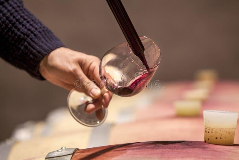 Muestreo del vino foto de archivo
