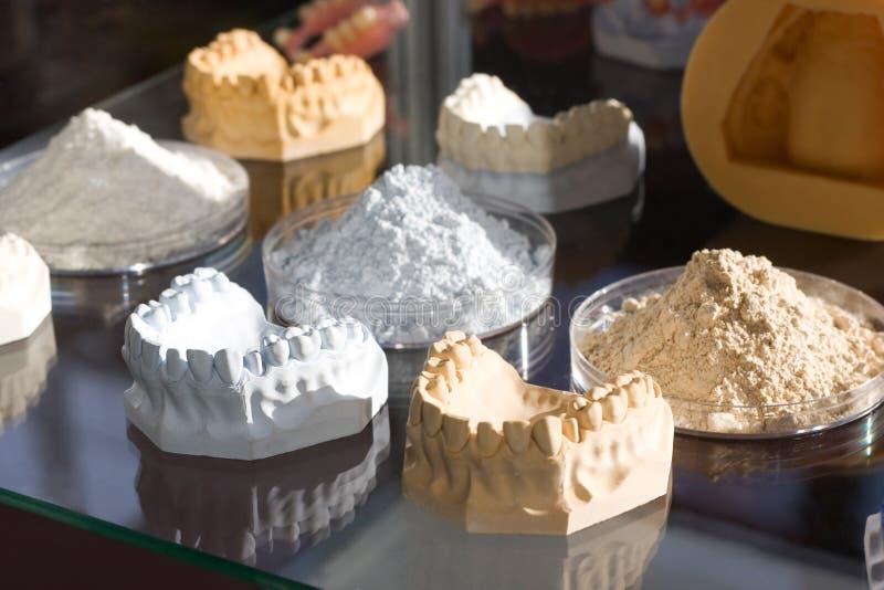 Muffa dentale fotografia stock libera da diritti