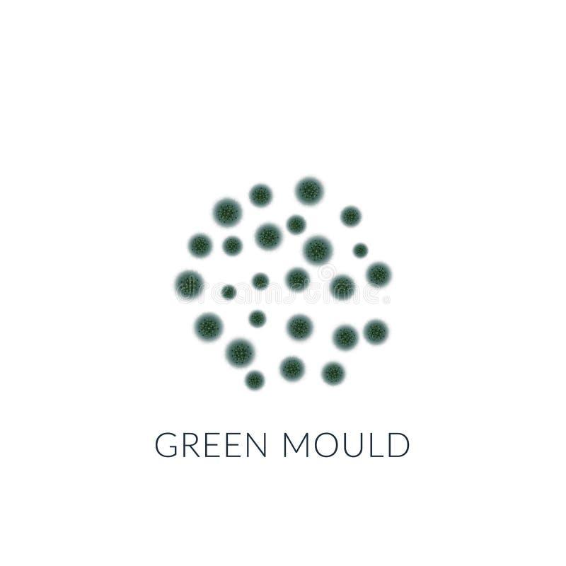 Muffa verde isolata su fondo bianco illustrazione di stock