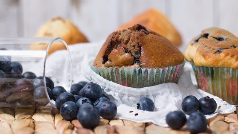 Muffin με τα βακκίνια στοκ εικόνα με δικαίωμα ελεύθερης χρήσης