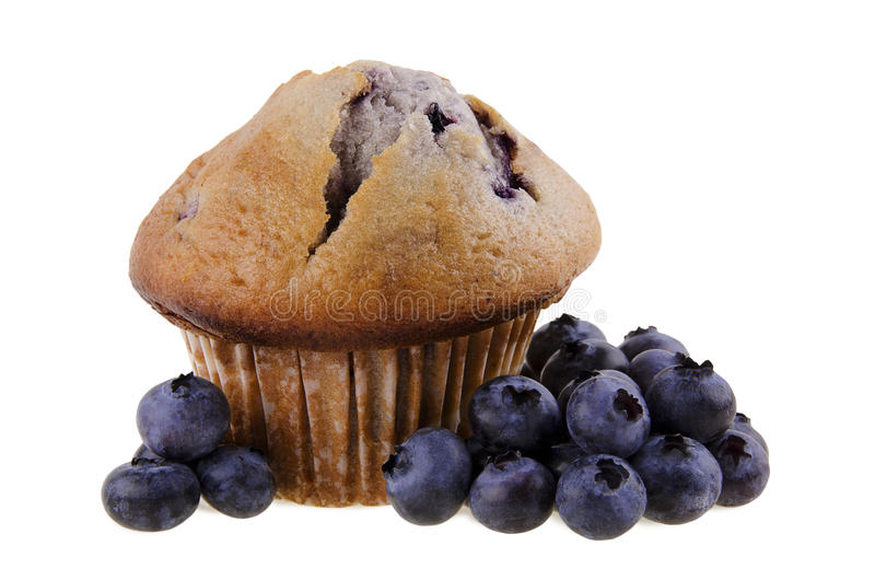 Muffin ai mirtilli fotografie stock libere da diritti