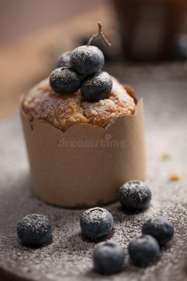Muffin ai mirtilli fotografie stock