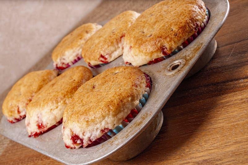 Muffin al forno freschi, pentola fotografia stock libera da diritti