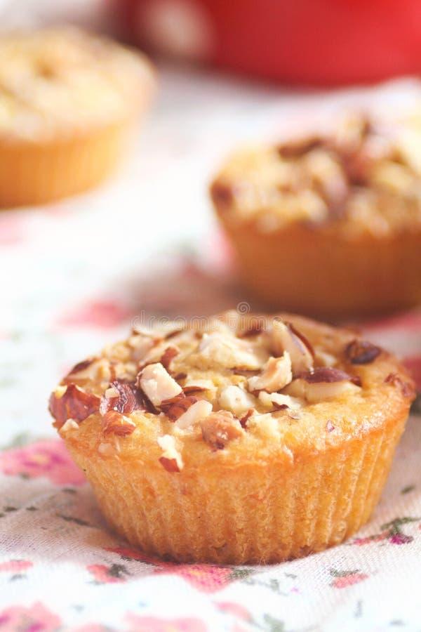Muffin casalinghi con i dadi e la carota fotografia stock libera da diritti