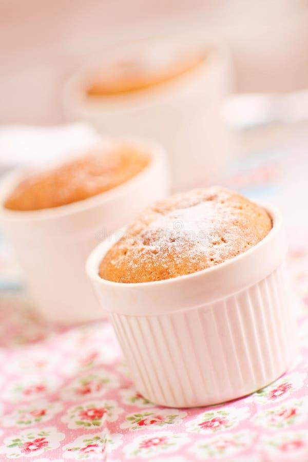 Muffin casalinghi della vaniglia in muffe fotografie stock libere da diritti