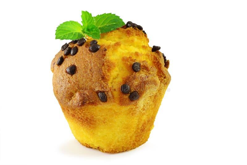 Muffin closeup stock images