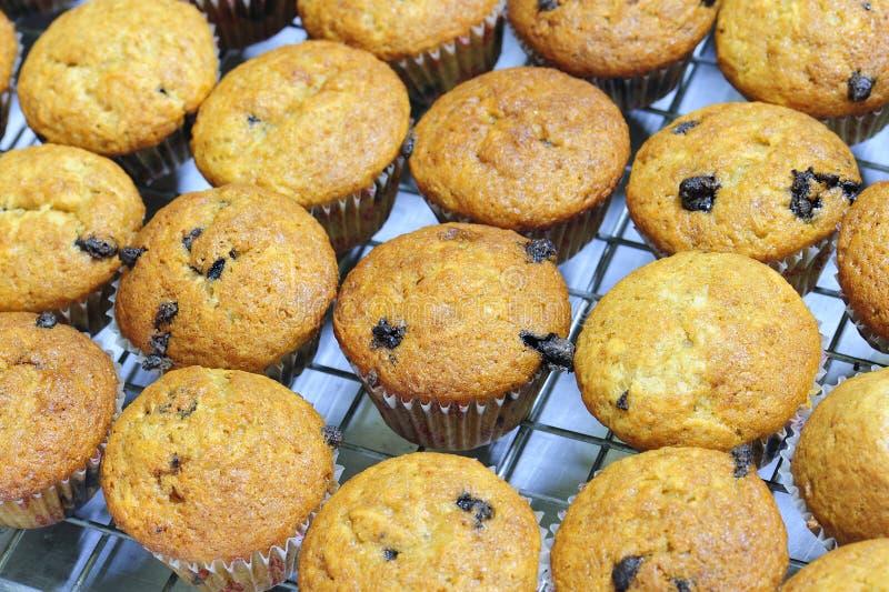 Muffin de Banan imagens de stock