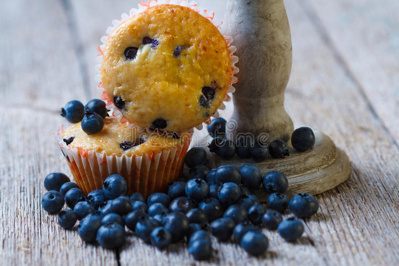 Muffin de blueberry caseiros fotos de stock royalty free