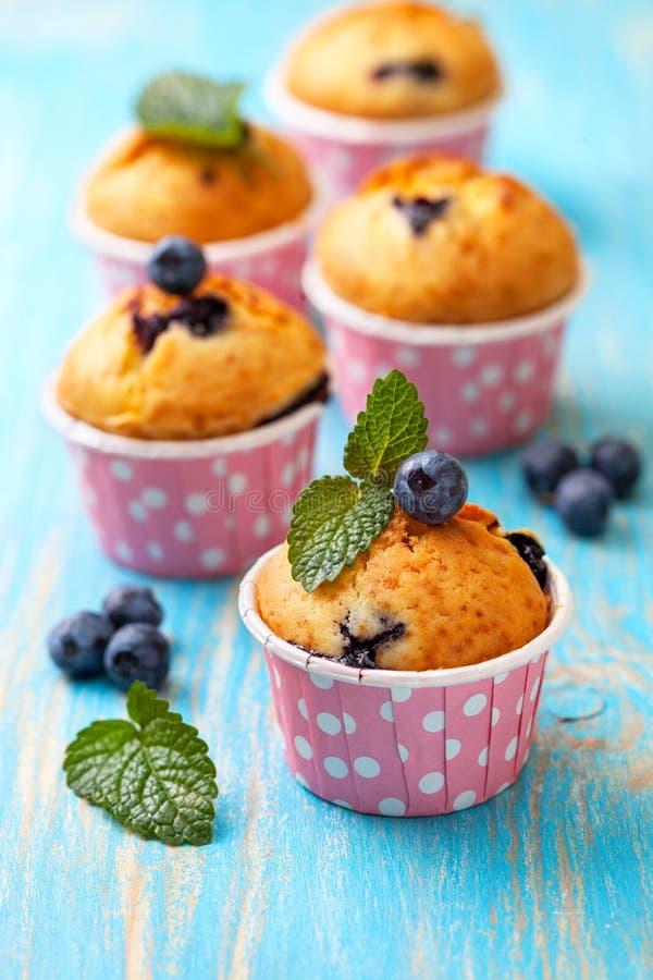 Muffin de blueberry em casos cor-de-rosa fotografia de stock royalty free