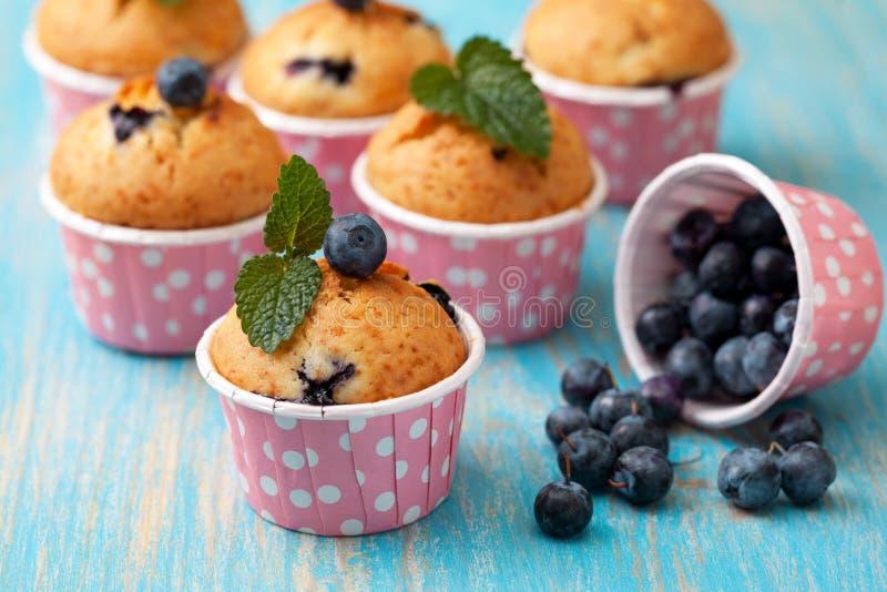 Muffin de blueberry em casos cor-de-rosa fotografia de stock