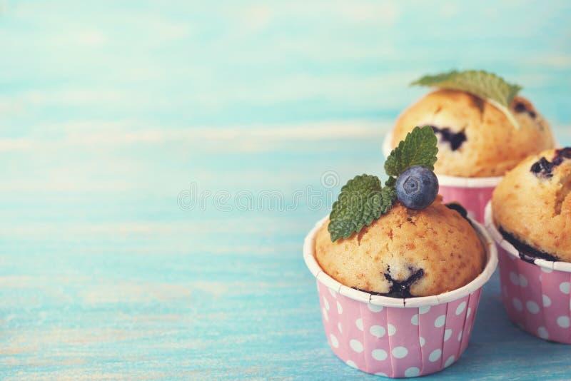 Muffin de blueberry em casos cor-de-rosa fotos de stock royalty free