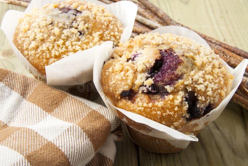 Muffin de blueberry fresco imagem de stock royalty free