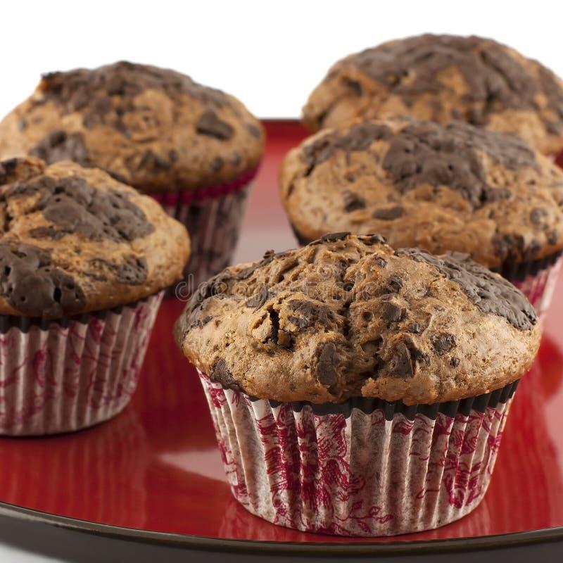 Muffin do chocolate imagem de stock