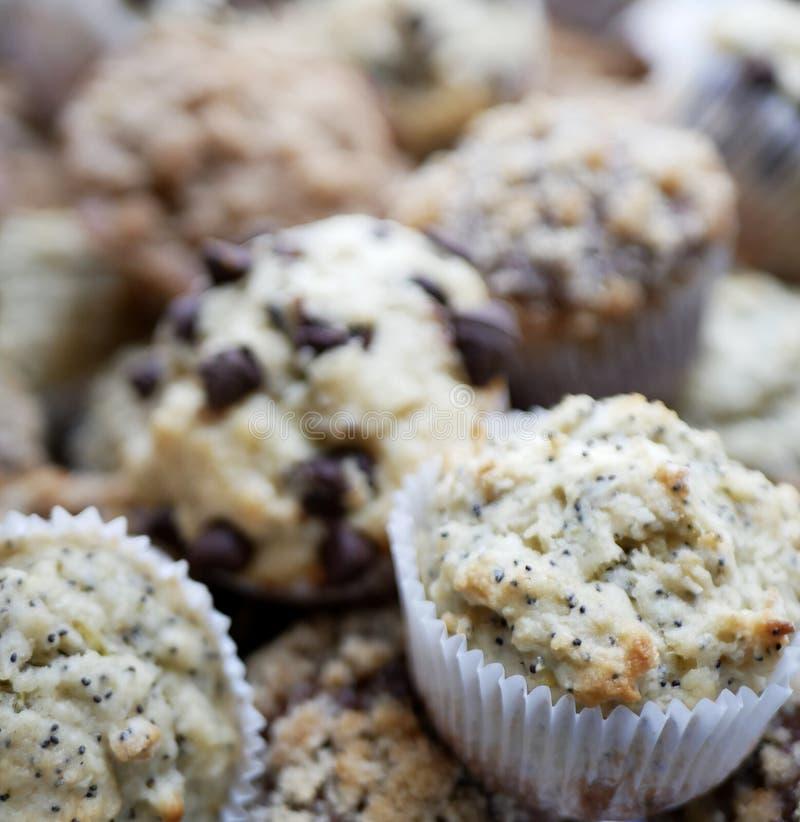 Muffin gastronomici casalinghi della prima colazione immagine stock libera da diritti