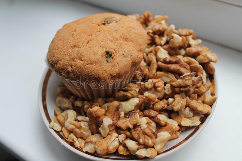 Muffin. Golden crust sweet muffin with raisin on plate in pile of walnuts royalty free stock photography