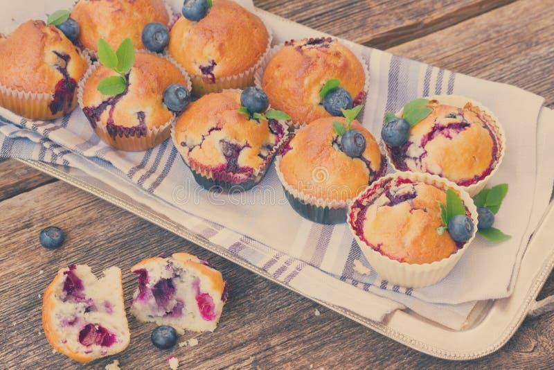 Muffin med blåbäret royaltyfri bild