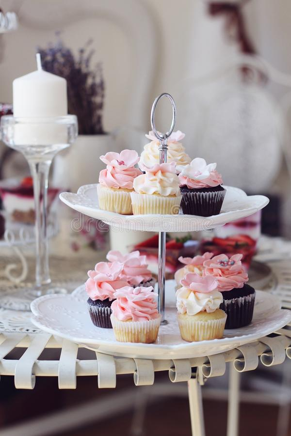 Muffin och kortkortmuffin royaltyfria bilder
