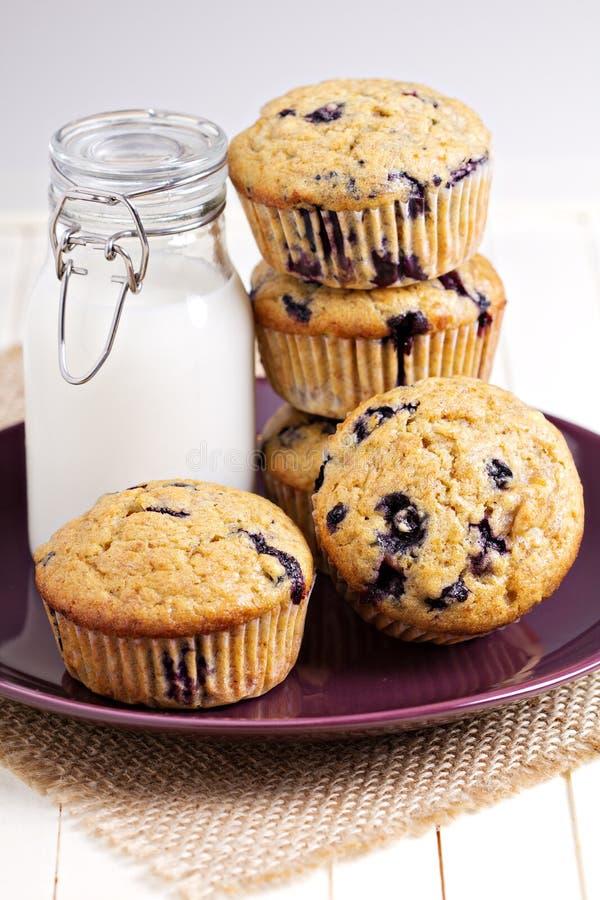 Muffin sani della banana del mirtillo immagini stock