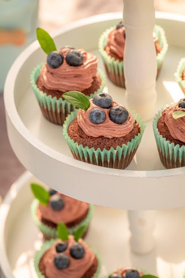 Muffin saporito del cioccolato fatto di crema e delle bacche fresche fotografie stock libere da diritti