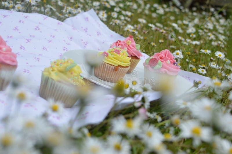 Muffin variopinti, fuori del picnic fotografia stock libera da diritti