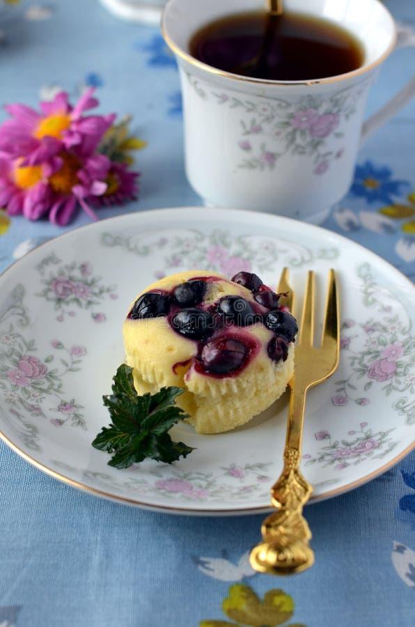 Muffiner med blacken-currant royaltyfria bilder