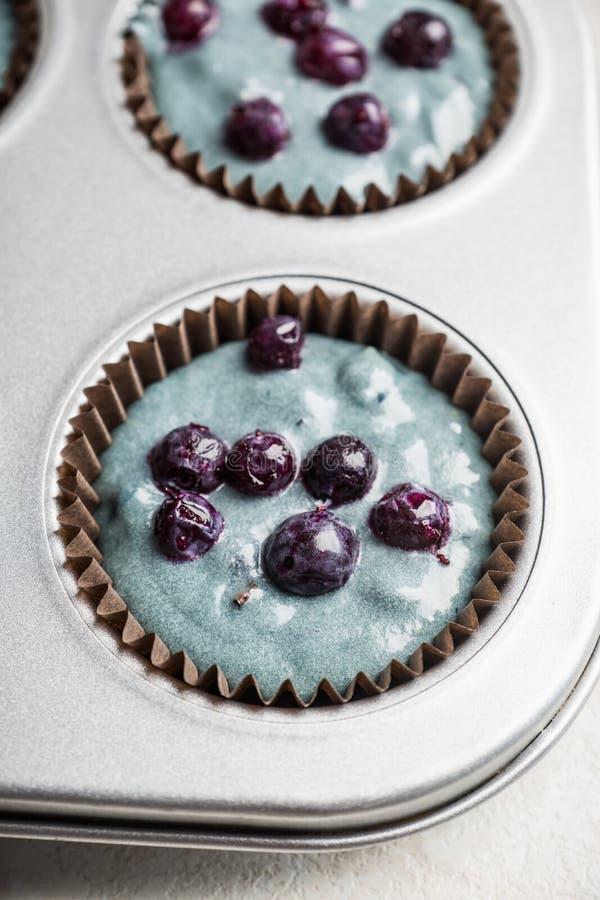 Muffinframställning Rå deg med bär i formen som är klar att baka royaltyfria bilder