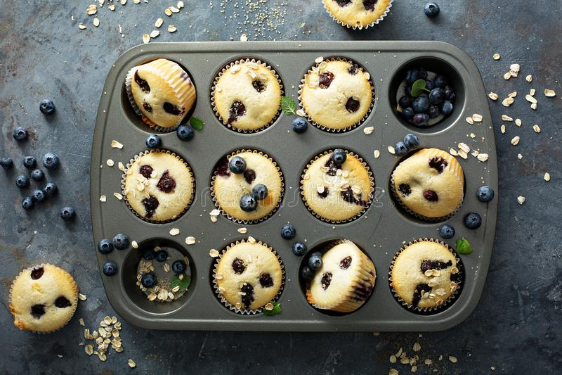 Muffins βακκινίων σε ένα τηγάνι στοκ εικόνα