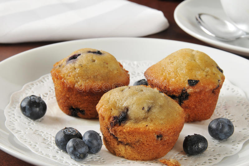 Muffins βακκινίων στοκ εικόνες