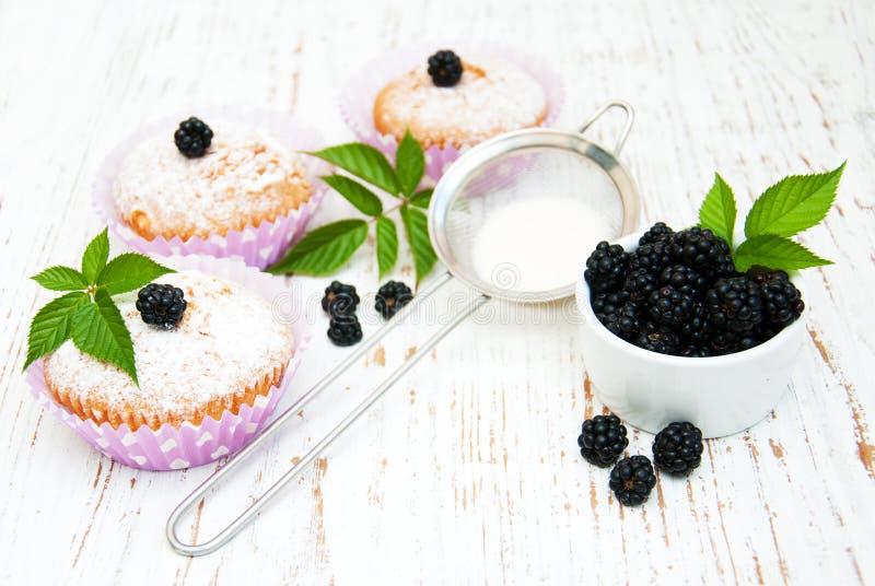 Muffins με το βατόμουρο στοκ φωτογραφία με δικαίωμα ελεύθερης χρήσης