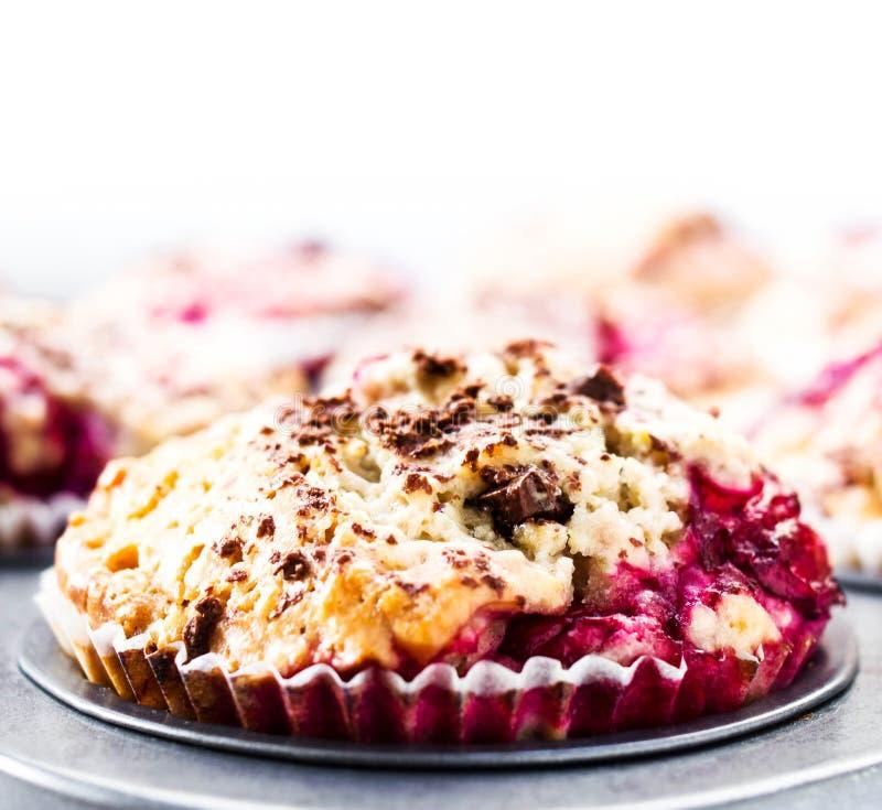 Muffins μούρων με τη σοκολάτα ψεκάζουν στο δίσκο ψησίματος. Κινηματογράφηση σε πρώτο πλάνο. στοκ φωτογραφία με δικαίωμα ελεύθερης χρήσης