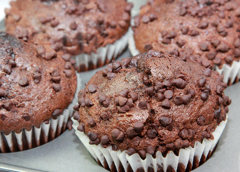 muffins σοκολάτας στοκ φωτογραφία