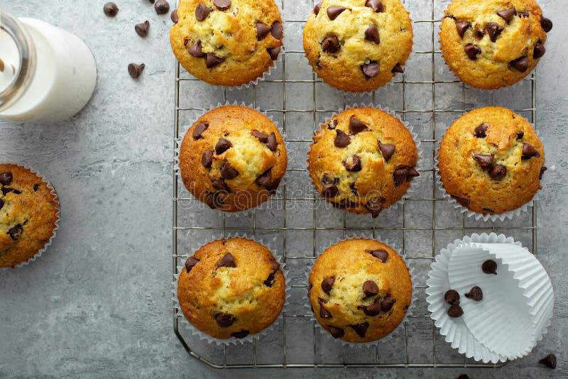 Muffins τσιπ σοκολάτας με το γάλα στοκ φωτογραφία με δικαίωμα ελεύθερης χρήσης