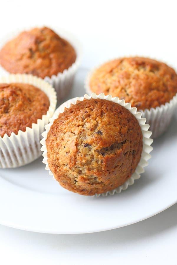 Muffins τσιπ σοκολάτας στοκ εικόνες