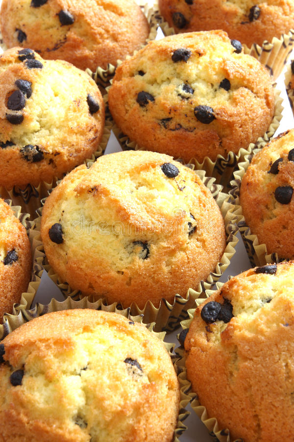 Free Muffins Royalty Free Stock Photos - 13416008