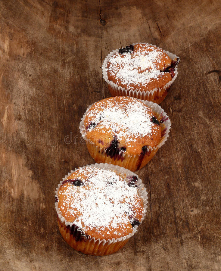 Free Muffins Stock Photography - 16992492