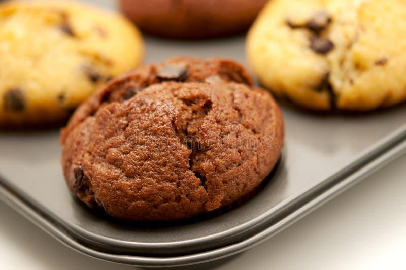 Download Muffins stock photo. Image of studio, macro, shot, small - 18983104
