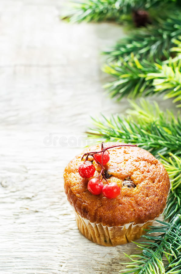 Muffins with cinnamon and chocolate drops. Muffins with cinnamon and chocolate chips on a light woody background. tinting. selective focus on the middle of the royalty free stock image