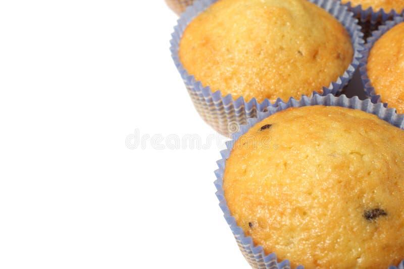 Muffins getrennt auf weißem Hintergrund lizenzfreie stockfotos