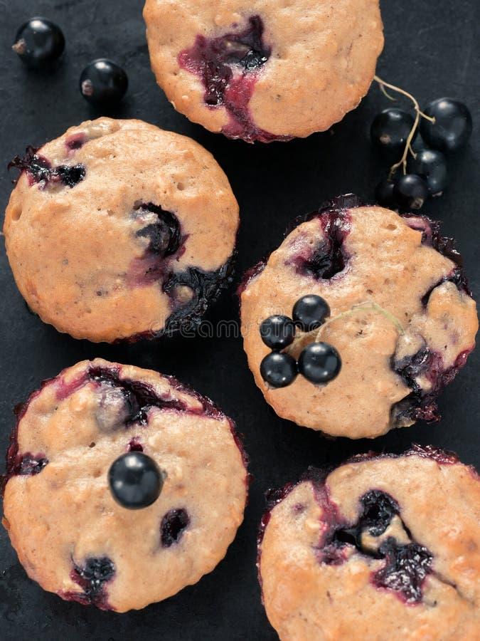Muffins mit Schwarzer Johannisbeere stockfotos