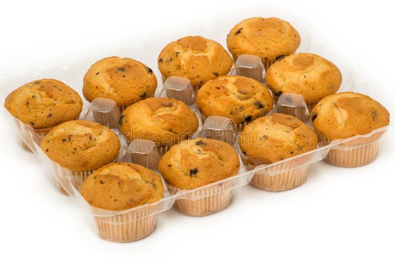 Muffins in a Tray stock photography