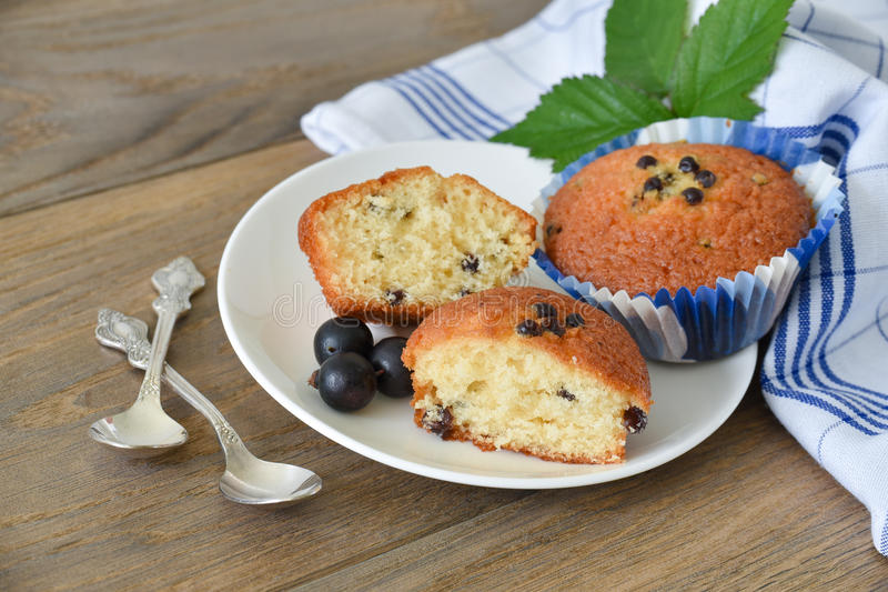 Muffins z blackcurrants fotografia stock