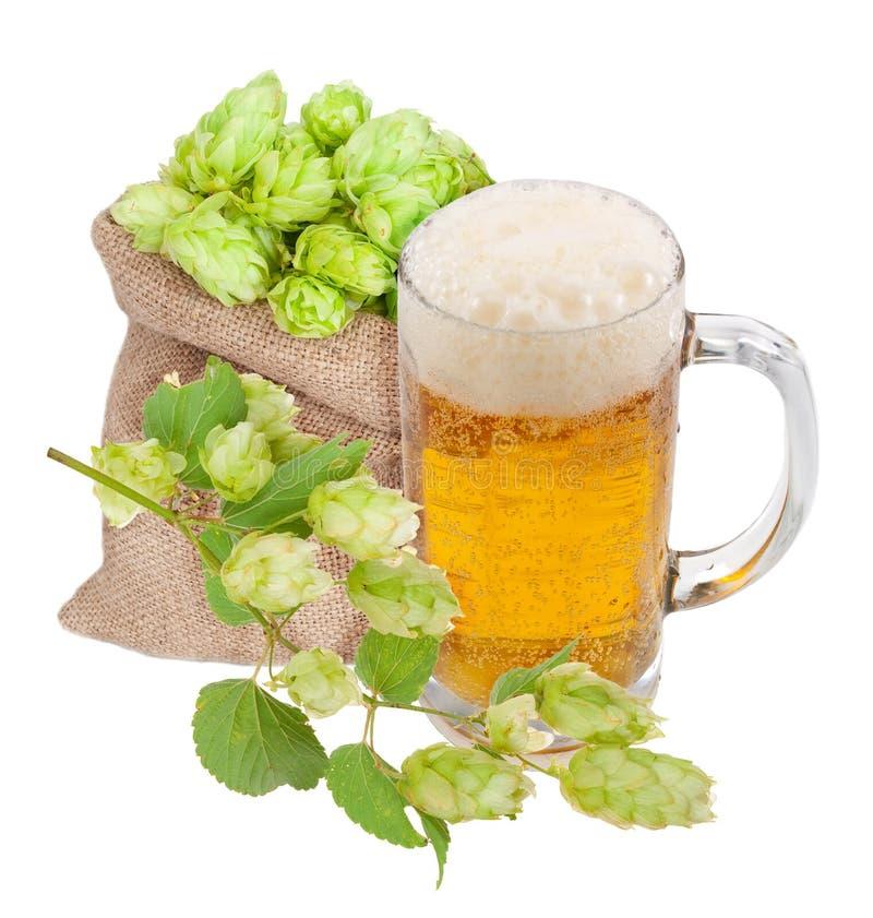 Mug Of Beer And Hops Royalty Free Stock Photo