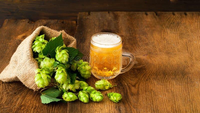 Mug of beer mit fresh hop on wooden background. Oktoberfest beer festival concept. Close-up royalty free stock images