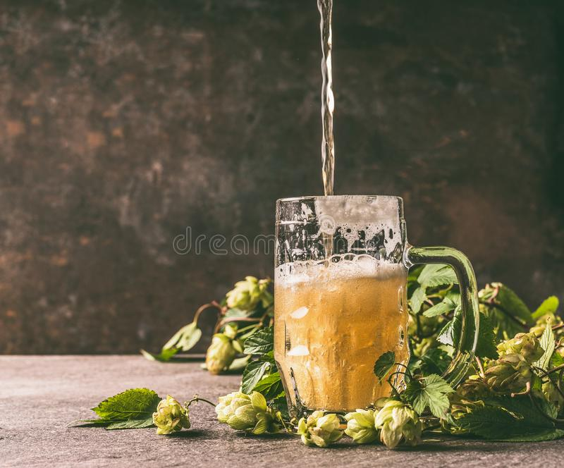Mug of beer on a rustic table with a vine and cones of hops opposite a dark wall, front view. Beer is poured into a mug stock images