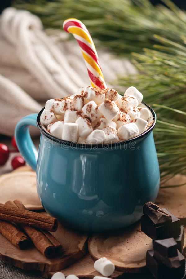 Mug of hot chocolate with marshmallow on a knitted blanket background. Concept of a cozy Christmas home holiday royalty free stock images