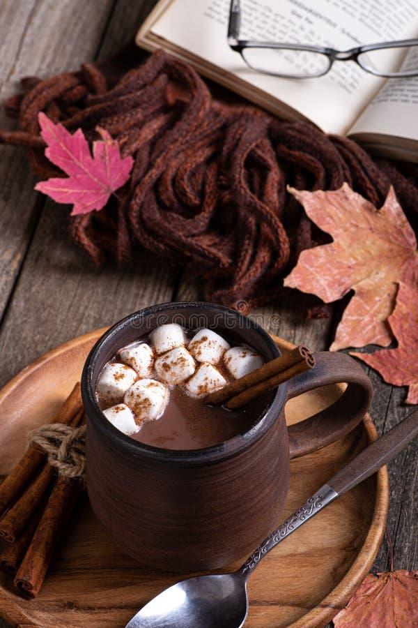 Mug of Hot Chocolate With Marshmallows and Cinnamon royalty free stock image