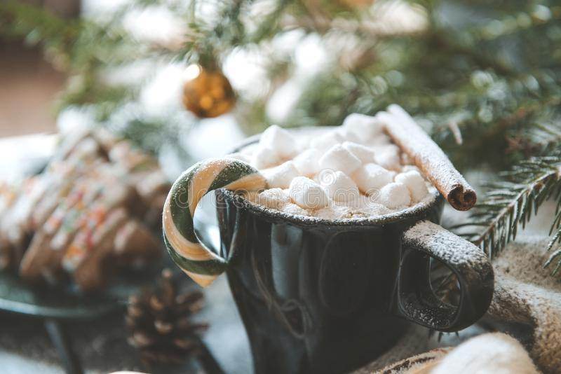 Mug of hot chocolate with marshmallows and a cinnamon stick on the background of fir branches, Christmas spirit stock photography