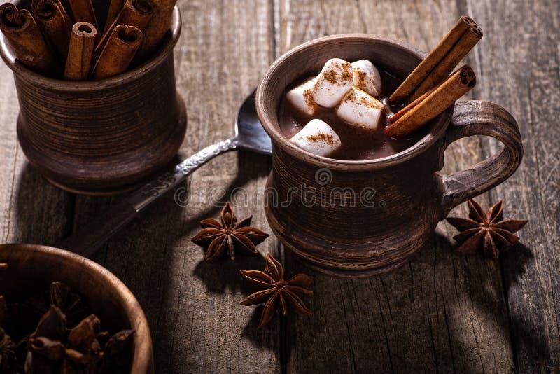 Mug of Hot Chocolate With Marshmallows and Cinnamon royalty free stock photos