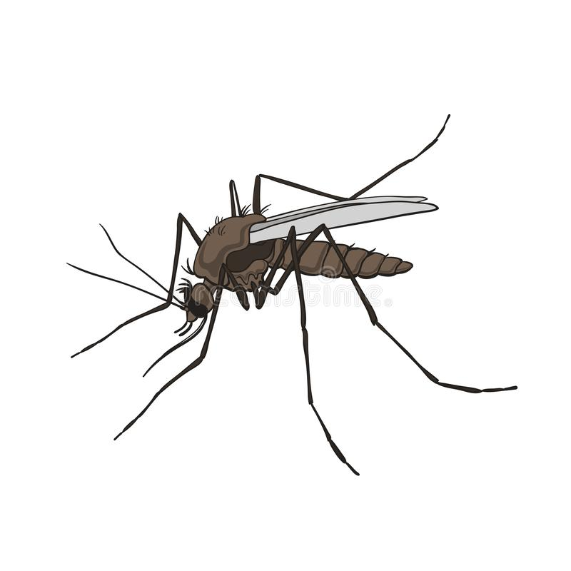 mug Kleurrijk, geïsoleerd op een witte achtergrond stock illustratie